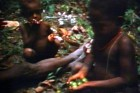 [garden-days-village-in-papua-new-guinea--Film-image]
