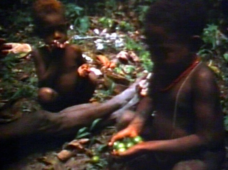 [garden-days-village-in-papua-new-guinea--Film-list-image]