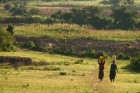 [law-and-war-in-rural-kenya--Film-image]
